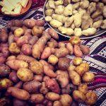 Batatas peruanas em Parque de la Papa