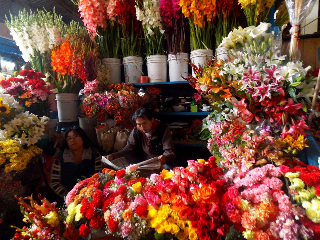 Cusco ou Cuzco | Historia e Cultura Inca
