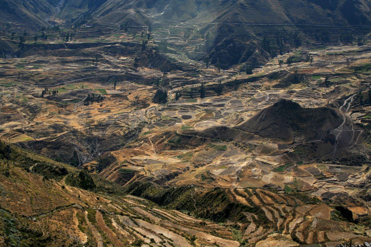 Cânion del Colca – um dos cânions mais profundos do mundo, e ele fica na América do Sul!