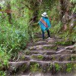 Por que subir a montanha Huayna Picchu?